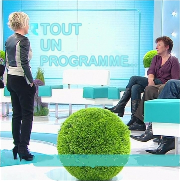 Emission diffusée du lundi au vendredi, abordant chaque jour différents thèmes de société, présentée depuis septembre 2010 par Sophie Davant ... .
