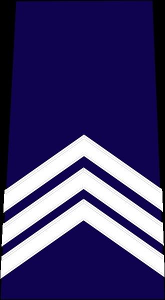 Dans la police nationale française, à quel grade porte t-on cette insigne ?