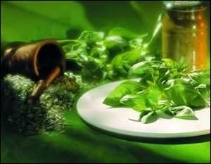 Gastronomie. Comment utiliserez-vous le basilic dans les plats chauds ?