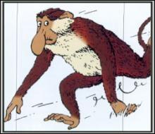 Dans quel album remarque-t-on un singe nasique dont le nez n'est pas sans rappeler celui de Rastapopoulos ?