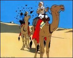 Dans quel album Tintin et le capitaine Haddock traversent-ils le désert en dromadaire ?