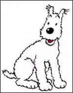 Quel est le nom de ce chien qui raffole des os et se laisse parfois tenter par quelques lapées de whisky « Loch Lomond » ?