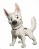 Quel est le nom de ce chien dont la jeune maîtresse s'appelle Penny ?