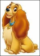 Quel est le nom de cette chienne amoureuse d'un clochard ?
