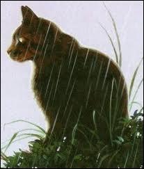 Est-ce la dernière vie d'Étoile Brisée ? Les chats du clan du Tonnerre le tue-t-il dans ce chapitre ? Si oui, qui le tue ?