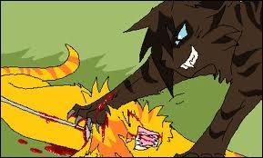 Cœur de Feu et Museau Balafré s'attaquent. Museau Balafré fait mal à Cœur de Feu à la cuisse. En le griffant ou en le mordant ?