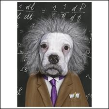 A l'origine de l'équation  E=MC2 .