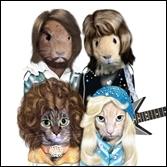Groupe pop suédois interprète de  Waterloo  et toujours d'actualité avec la comédie musicale  Mamma Mia !  .