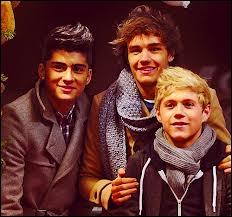 Qui est le plus jeune entre Zayn Malik, Niall Horan et Liam Payne ?
