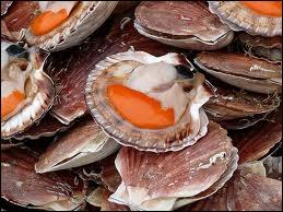 Quel est ce coquillage bivalve dont on consomme le  corail  ?