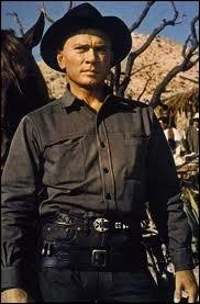 Une bande de cowboys avec à leur tête Yul Brynner vient en aide à des villageois mexicains.