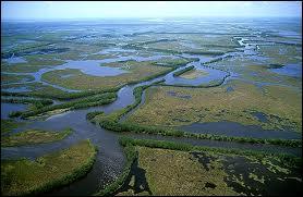 Dans quel Etat des Etats-Unis se trouve le delta du fleuve Mississippi ?