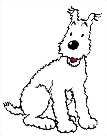Comment s'appelle le chien qui accompagne Tintin ?