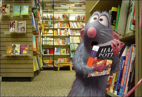 Depuis le temps qu'il voulait aller dans une vraie librairie pour voler Harry Potter, voilà, c'est fait. Qui est-ce ?