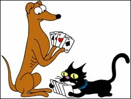 Comment s'appellent leur chien et leur chat ?