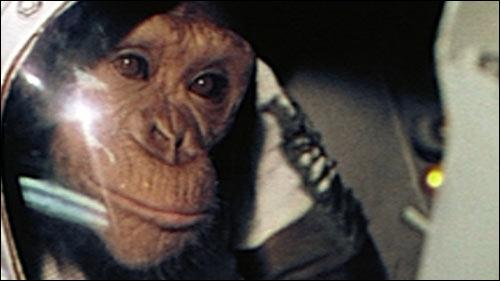 Le 31 janvier 1961, un chimpanzé décollait dans le cadre de la mission Mercury, destinée à préparer le premier vol d'un astronaute américain. Vous rappelez-vous du nom de ce chimpanzé ?