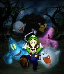 Dans quel jeu Luigi recherche-t-il son frère Mario ?