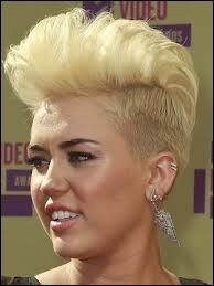Elle a désormais la même coiffure que Pink.