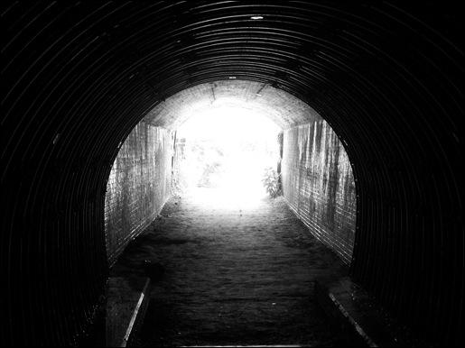 Dans un tunnel, entouré de rats, d'eau et d'une très forte odeur de fumier, vous faites votre travail en sifflotant (mais sans trop ouvrir la bouche, on ne sait jamais... ) Où êtes-vous ?