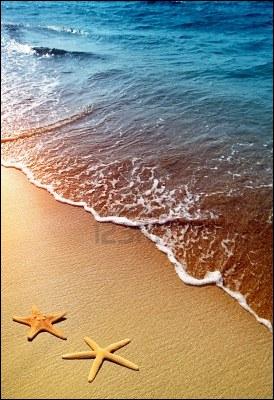 Avant toute chose, de quoi est constitué le sable ?