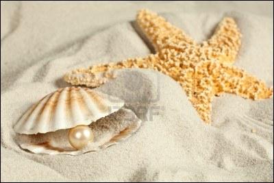 Qu'est-ce qui colore et texture le sable ?