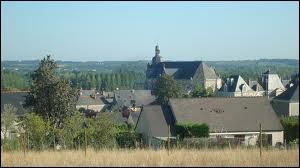 A votre avis, quel est le nom des habitants de Rochefort-sur-Loire ?