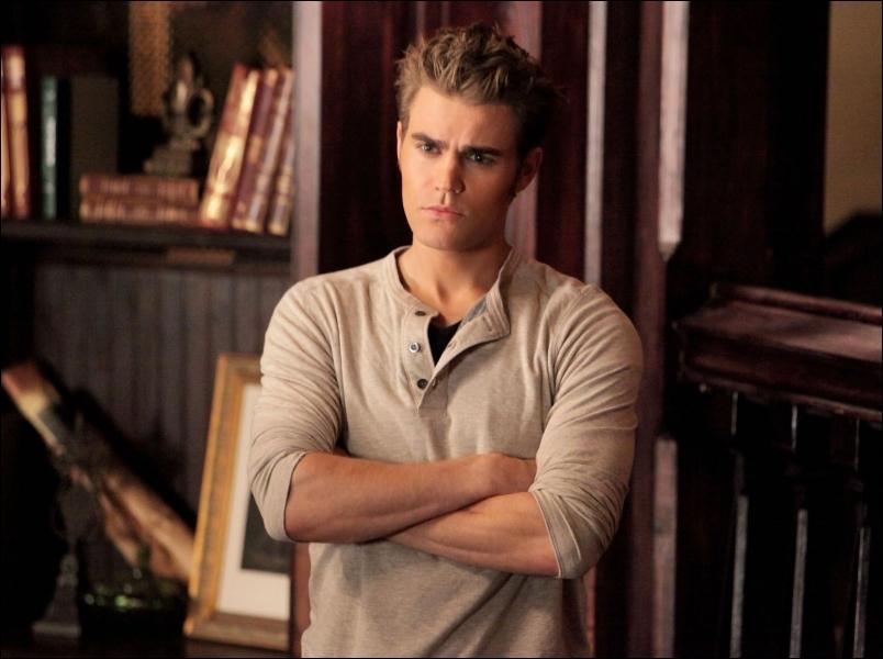 Que fait Stefan pour convaincre Klaus de faire partir ses hybrides ?