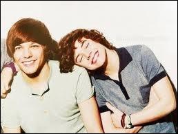 Harry et Louis ont partagé le même appartement.