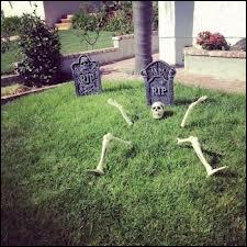 Comment tranformer votre jardin en un lieu très angoissant, grâce à quelques os judicieusement placés, ainsi on se croira... ?