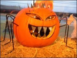 Ce potiron-ci ajoute au caractère effrayant de son sourire dentu, par l'apport... ?