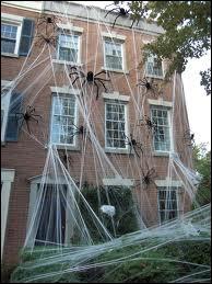 Les USA sont le pays d'Halloween, et certains décorent toute la maison, que ce soit en pleine ville ou dans la banlieue. Voici un exemple, qui présente peut-être un inconvénient... lequel ?