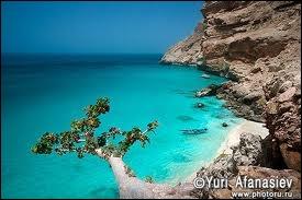 Socotra est une île du golfe d'Aden. À quel pays appartient-elle ?