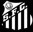Dans quel championnat joue ce club ?