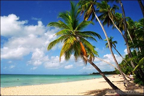 Le ciel, le Soleil et la mer  est un succès du milieu des années 60. cette chanson était interprétée par un artiste prénommé François. Lequel ?