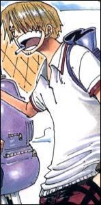 Quel est le métier de Sanji à bord du navire ?