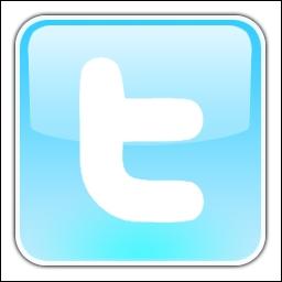 Quel réseau social est représenté à travers ce logo ?