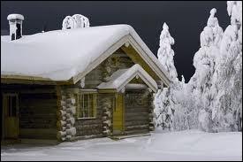 Qui interprétait les paroles  Y' a des étoiles qui courent dans la neige autour de son chalet de bois...   ?