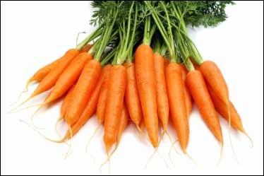 Quel membre du groupe aime les filles qui mangent des carottes ?