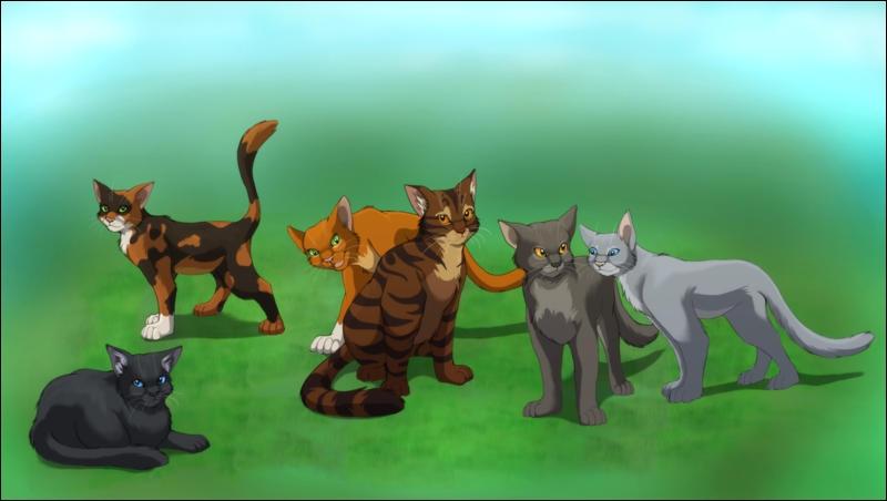 Qui sont ces 6 chats de gauche à droite ?