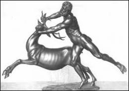 De quelle région venait le cervidé aux sabots d'airain et aux bois d'or, qu'Héraclès a poursuivi inlassablement lors de son troisième travail ?