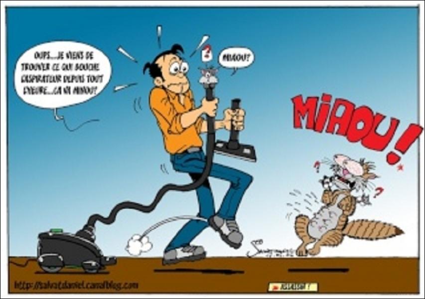 L'homme, le chat et l'aspirateur : trouvez la vraie proposition...