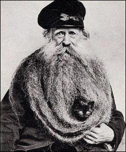 Le chat, le vieil homme et la sieste : trouvez la fausse proposition...