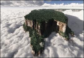 En Amérique du sud, comment appelle-t-on un haut plateau aux contours abruptes ?