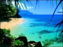 L'archipel volcanique d'Hawaï se compose de 137 îles. Où situez-vous l'Etat le plus récent des Etats-Unis ?