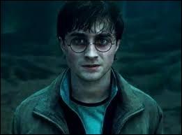 Quel est le nom de l'acteur qui joue Harry Potter ?