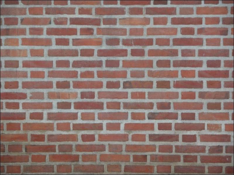 Quelles interactions empêchent votre main de traverser un mur ?
