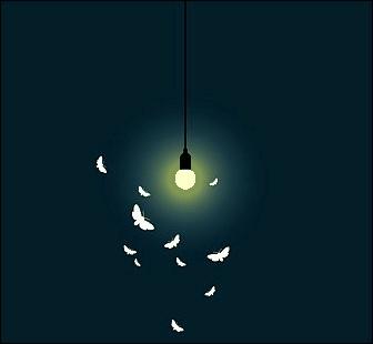 Quelle est la valeur de la vitesse de la lumière, approximativement ?