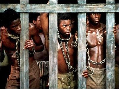 Cette série bouleversa l'Amérique, en racontant pour la première fois sans concession la réalité de l'esclavage des africains amenés par les négriers en Amérique du Nord...