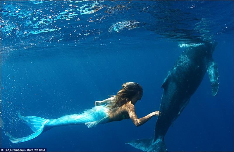 Voici une apnéiste-sirène, une artiste connue, Hannah Fraser. Elle danse dans l'eau en tenue de sirène, spectacle poétique et ravissant. Quelle est sa nationalité ?