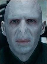 Pour quelle raison le mage noir a-t-il choisi de s'appeler Voldemort ?